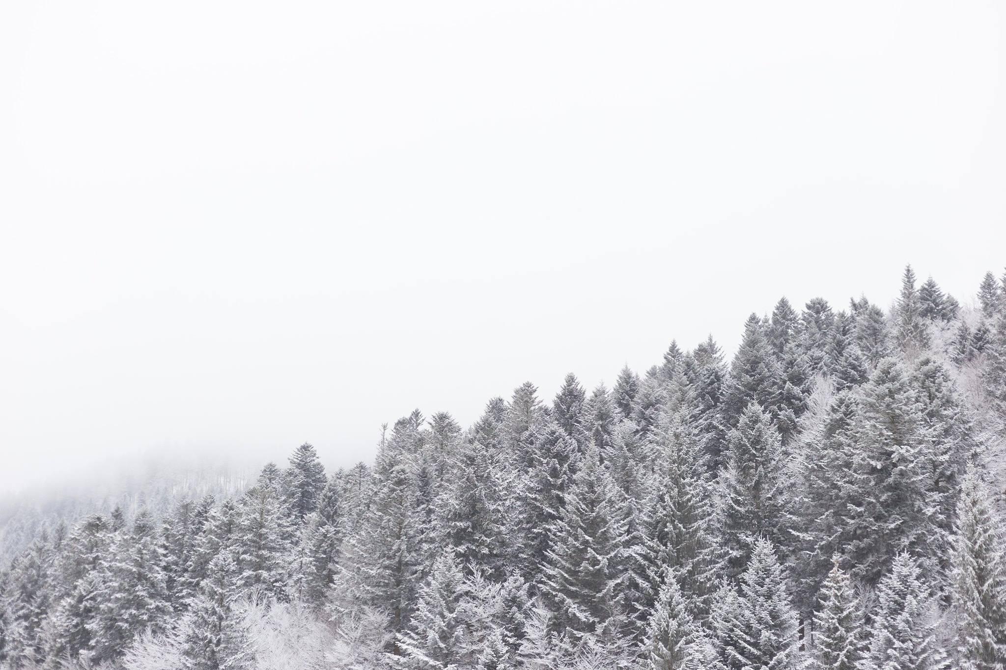 Winter paradise, Les Vosges